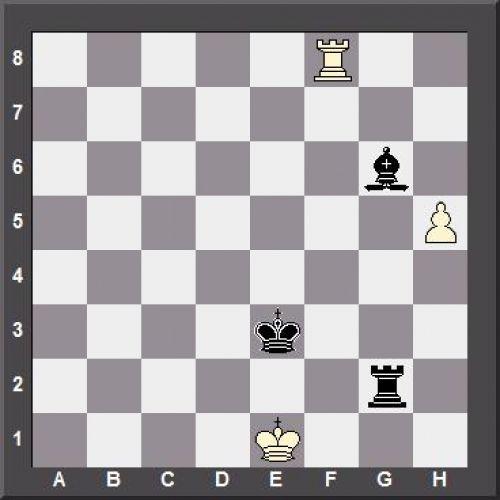 Duda-Caruana 2018.jpg