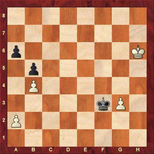 Krivenko Dion - Levchenko Marina (46...Kf3).jpg