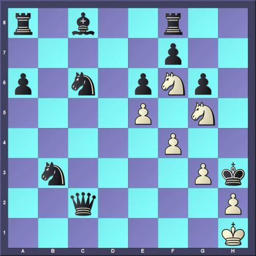 Veressov Gavriil - Kuhharev (10.Ng5#).jpg